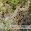 SLIDER 2015_09_LaPalma Cumbrecita